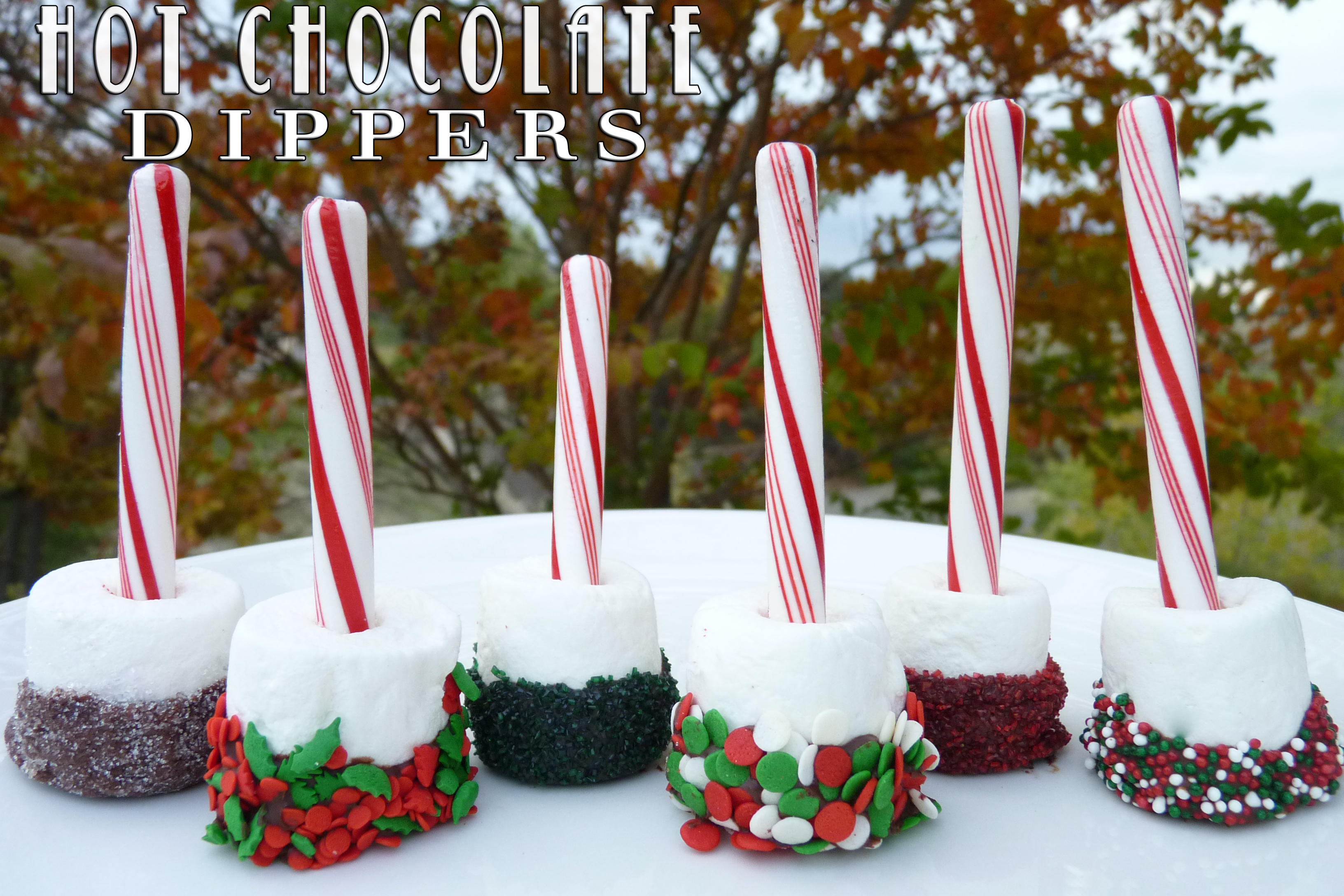 Hot Chocolate Dippers