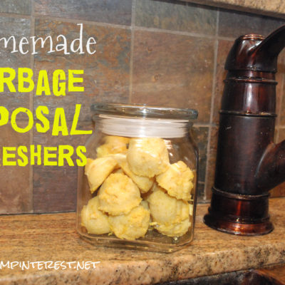 Homemade Garbage Disposal Refreshers