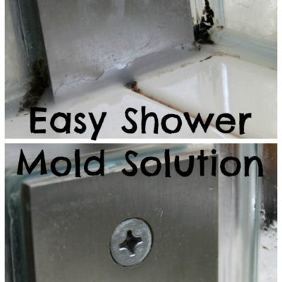 Easy Shower Mold Solution