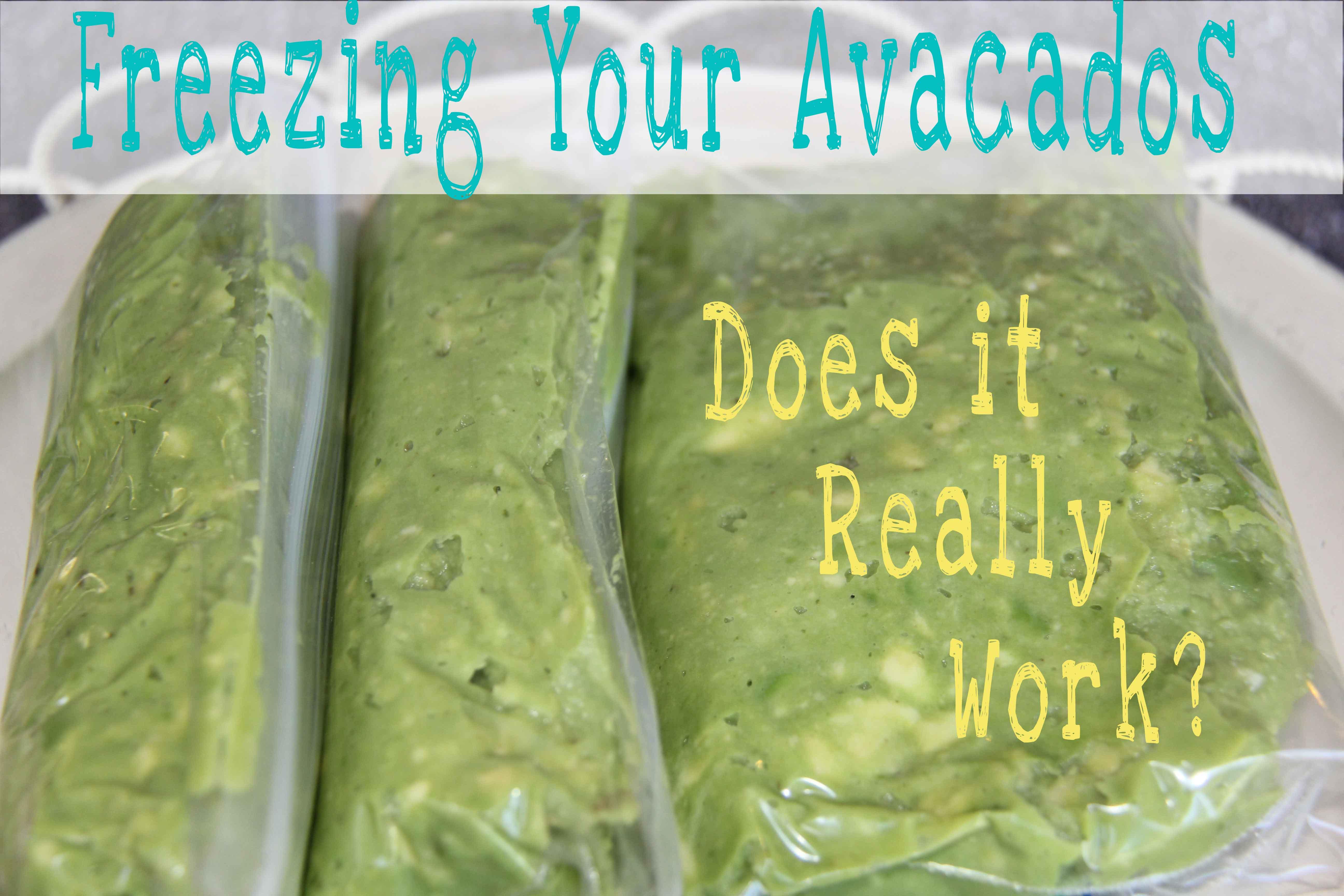 marvelous frozen avocado Part - 4: marvelous frozen avocado pictures
