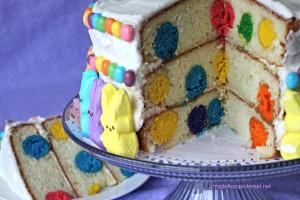 Polka-Dot-Cake (1)