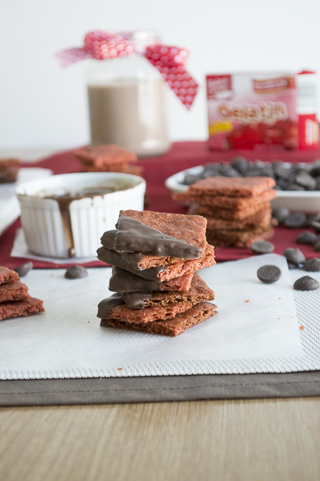 Chocolate-Dipped-Strawberry-Graham-Crackers-4 (1)