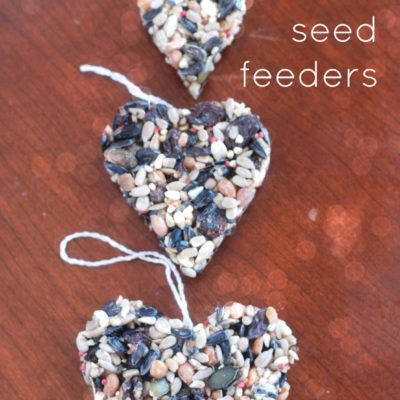 Hanging Bird Seed Feeders