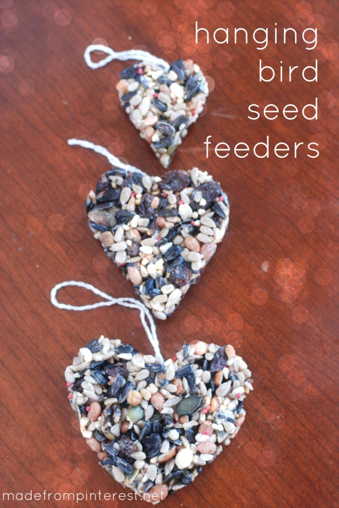February is National Bird Feeding Month.  Make these easy DIY Hanging Bird Seed Feeders!