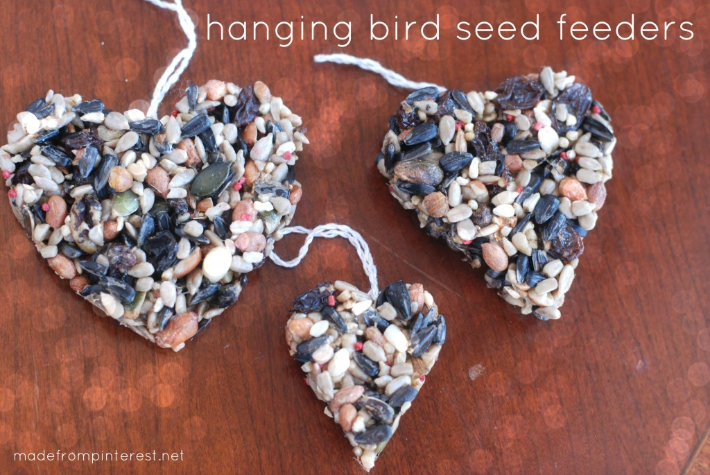 It's National Feed a Bird month!  Easy to make DIY Hanging Bird Seed Feeders that you can make with your kids!