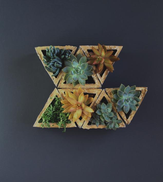 modular-succulent-planter