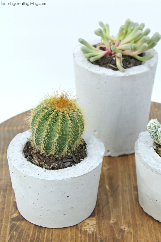 DIY-concrete-planters