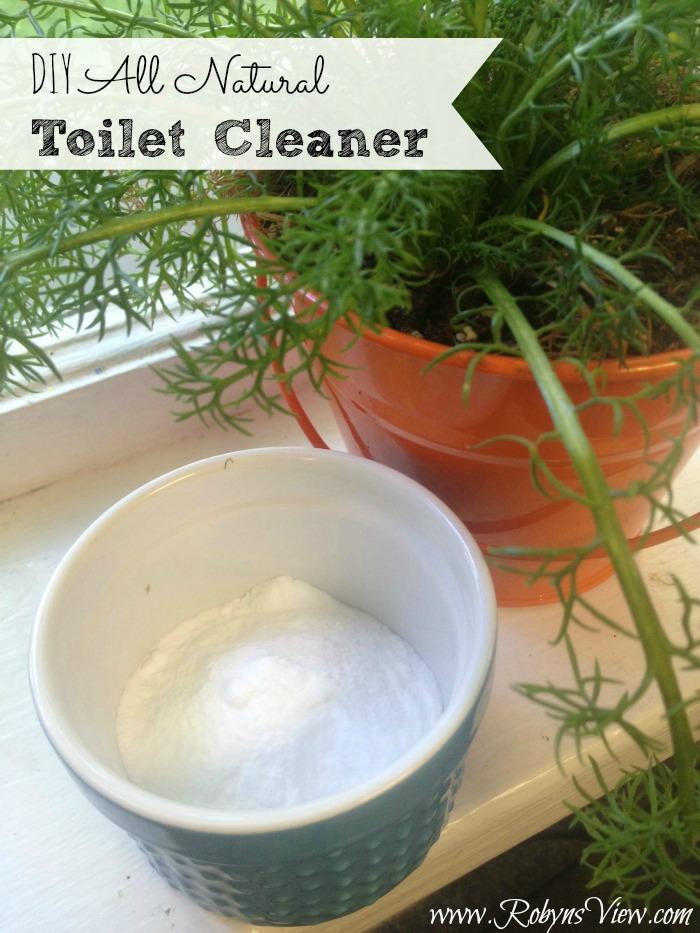 DIY-Toilet-Cleaner