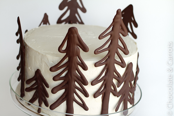 Chocolate-Raspberry-Forest-Cake-9877