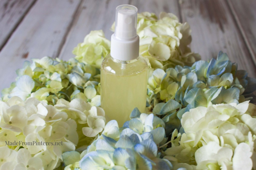 Stop the Stink Spray - This homemade spray is the perfect gag gift that really works!