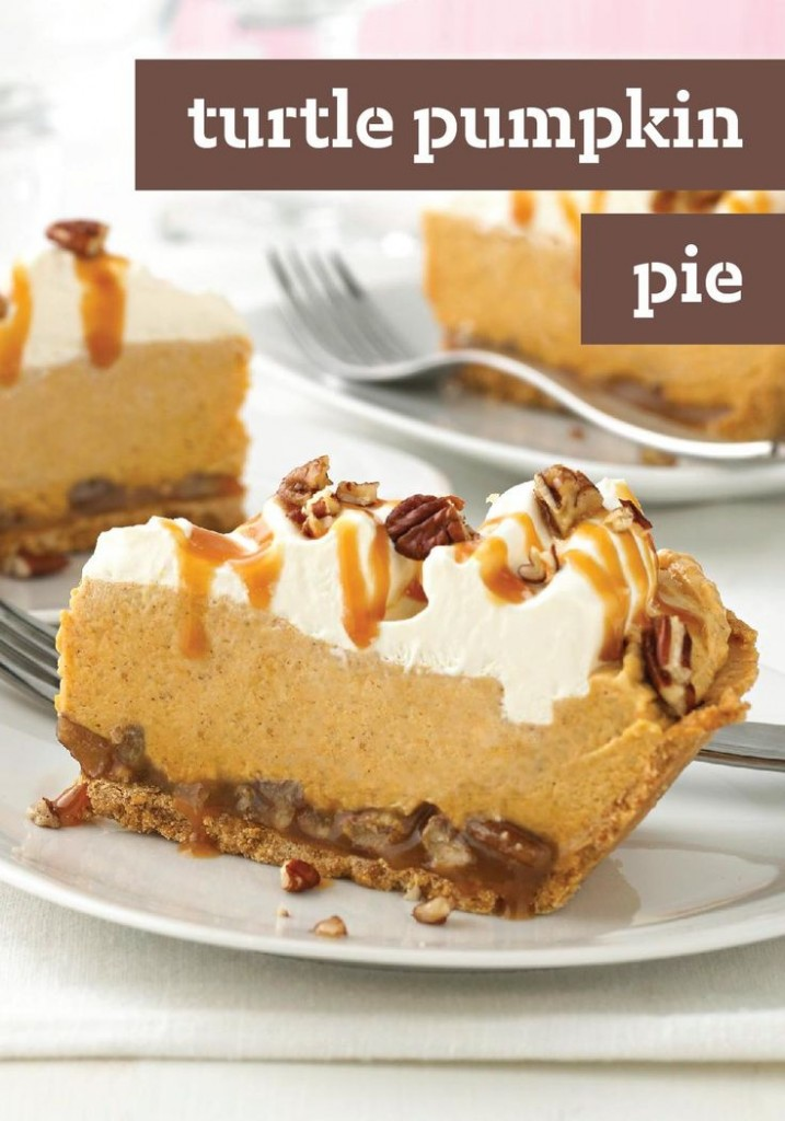 turtle-pumpkin-pie