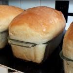 buttermilk-honey-bread