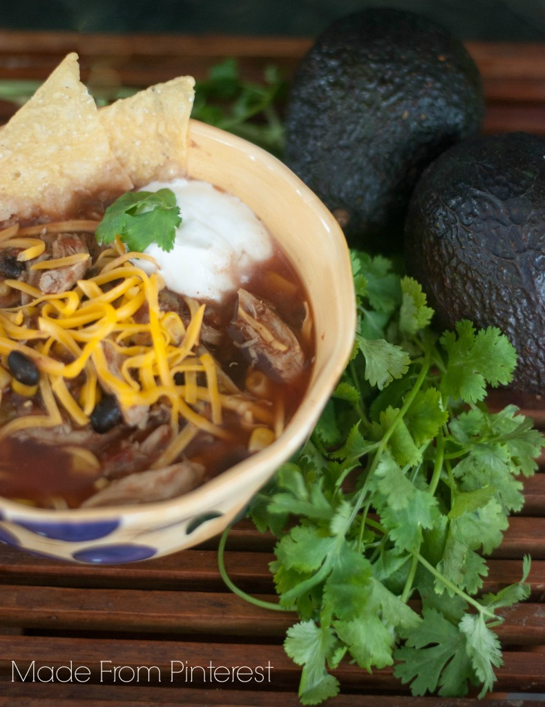 Make this soup as mild or as spicy as you like it. Spicy Chicken Tortilla Soup won't disappoint