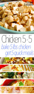These 5 Quick Chicken Meals using 5lbs of chicken are so easy! Cook the chicken with this recipe at the beginning of the week and use it all week long for individual meals!
