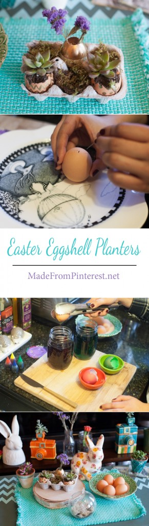Easter Eggshell Planters. Made out of blown out eggshells, add some soil and a succulent for a darling Easter centerpiece!