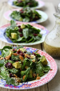 Fresh Cranberry Avocado Salad with Balsamic Vinaigrette! The perfect fancy summer salad!