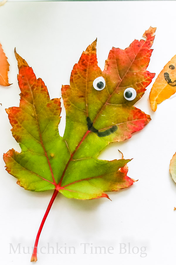 Super Cute Leaf Art for Kids