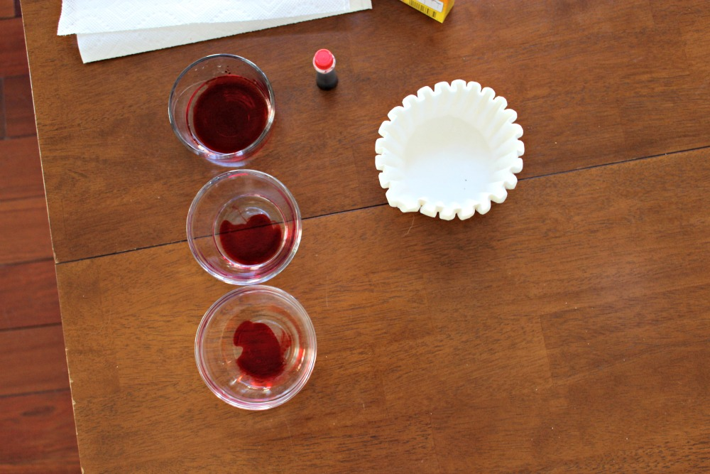 DIY-Coffee-Filter-Carnations