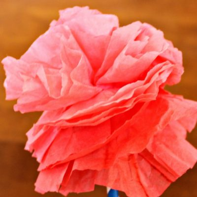 DIY Coffee Filter Carnations