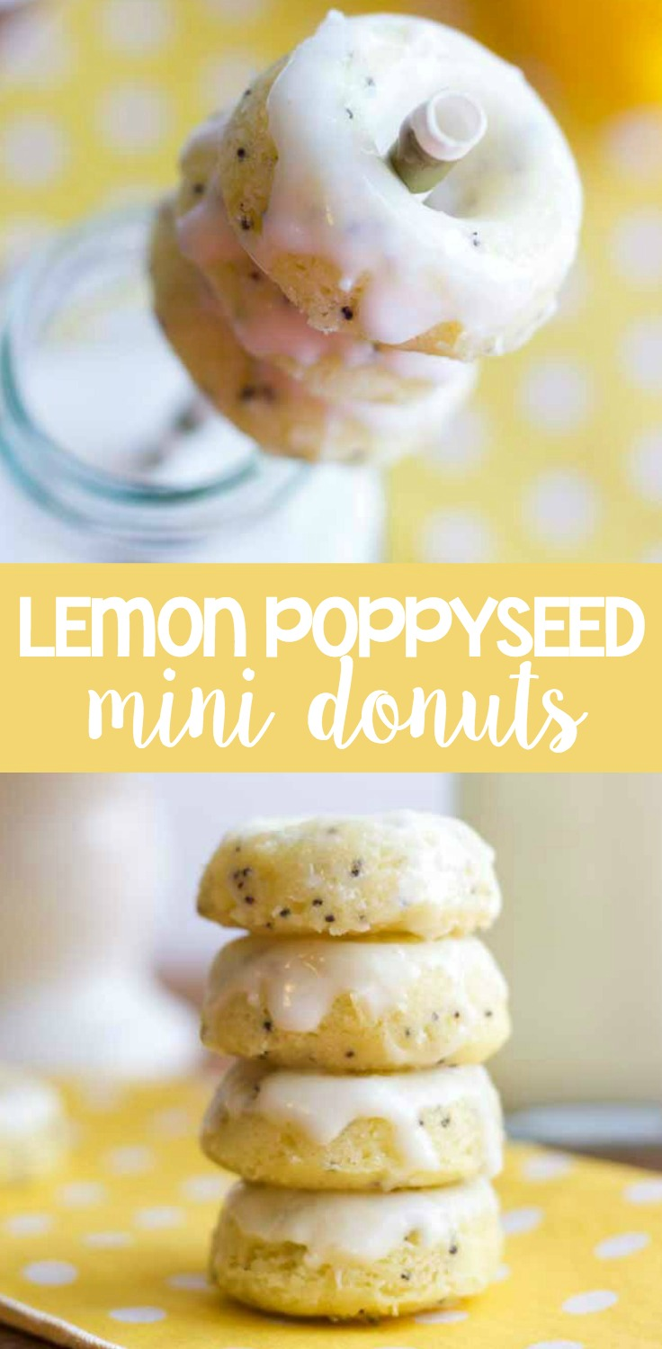 Lemon poppy seed mini donuts are bright, vibrant and perfect for spring! These baked donuts are made with lemon, poppy seed and topped with a sweet and tangy icing that are filled with so much citrus flavor.