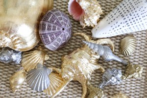 Gilded Seashells from AttaGirlSays.com