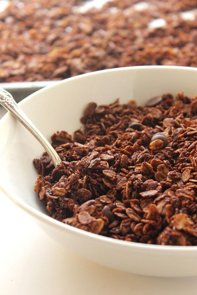 Skinny Dark Chocolate Chia Granola