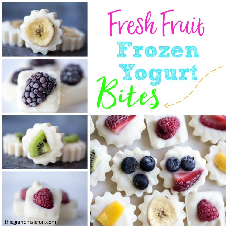 Made with Greek Yogurt these Frozen Yogurt bites are super refreshing. Just take a look at all the varieties of fresh fruit that you can use!