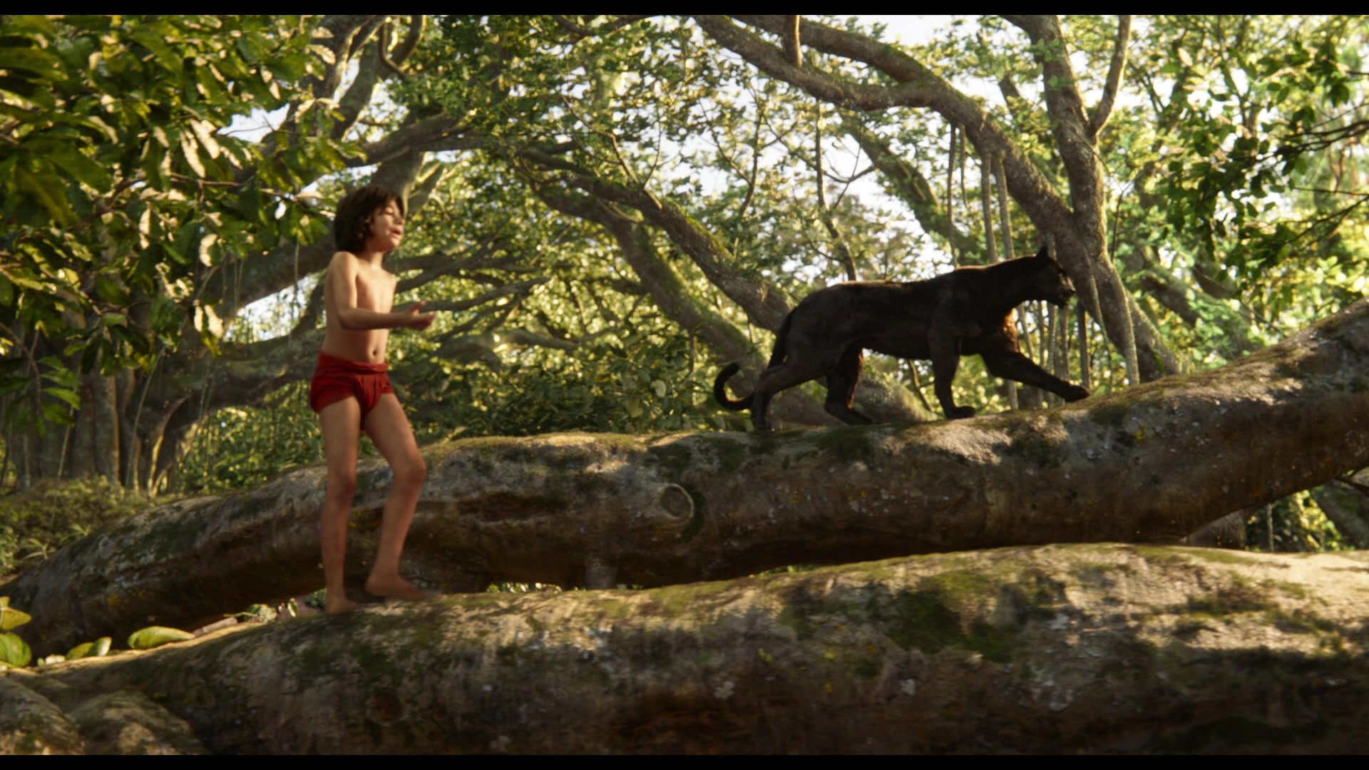 Jungle_Book_2016_Screenshot_0085