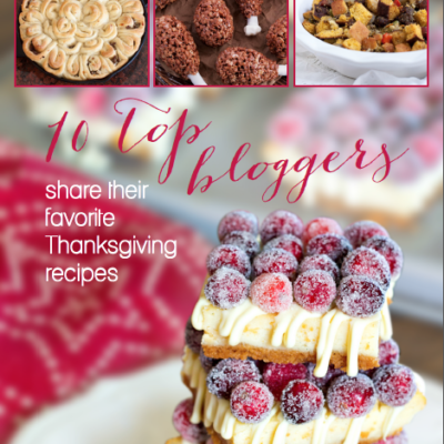 Your kitchen will create show-stopping recipes with this new e-book series: 10 Top Bloggers Share Their Favorite Recipes. The four books include Halloween, Thanksgiving, Fall, and Christmas recipes to welcome the holidays and excite your family's bellies.