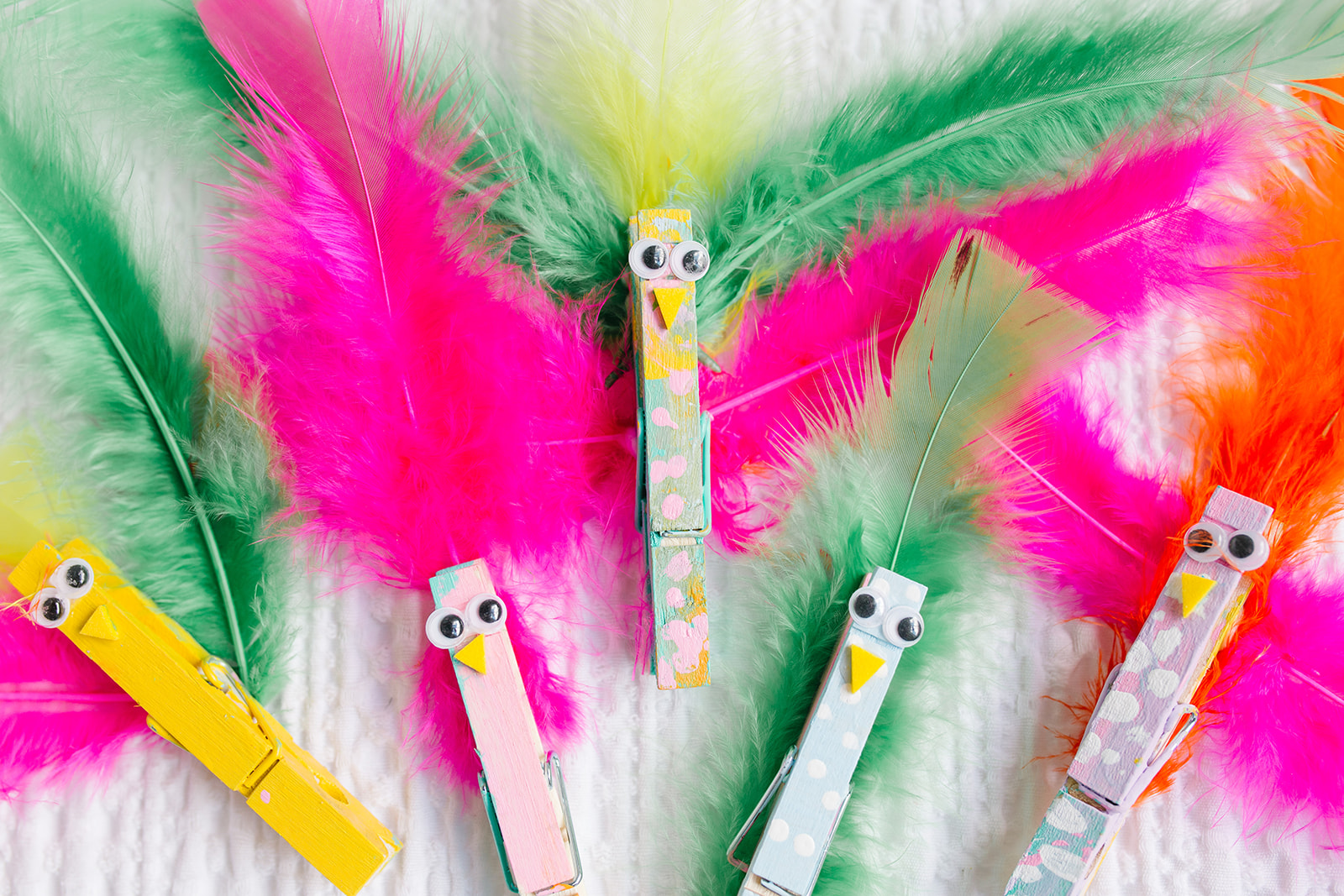 Clothes Pin Birds Craft