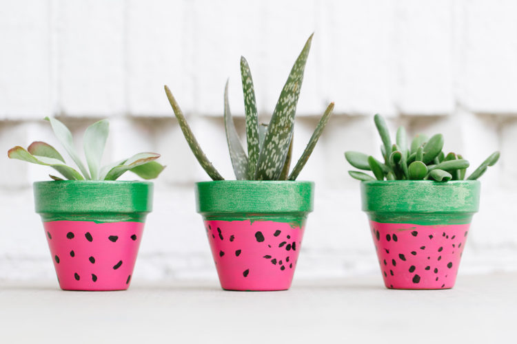 Watermelon Flower Pots