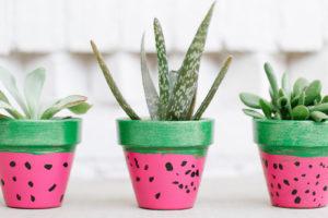 Watermelon Flower Pots