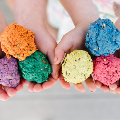 Flower Garden Seed Bombs