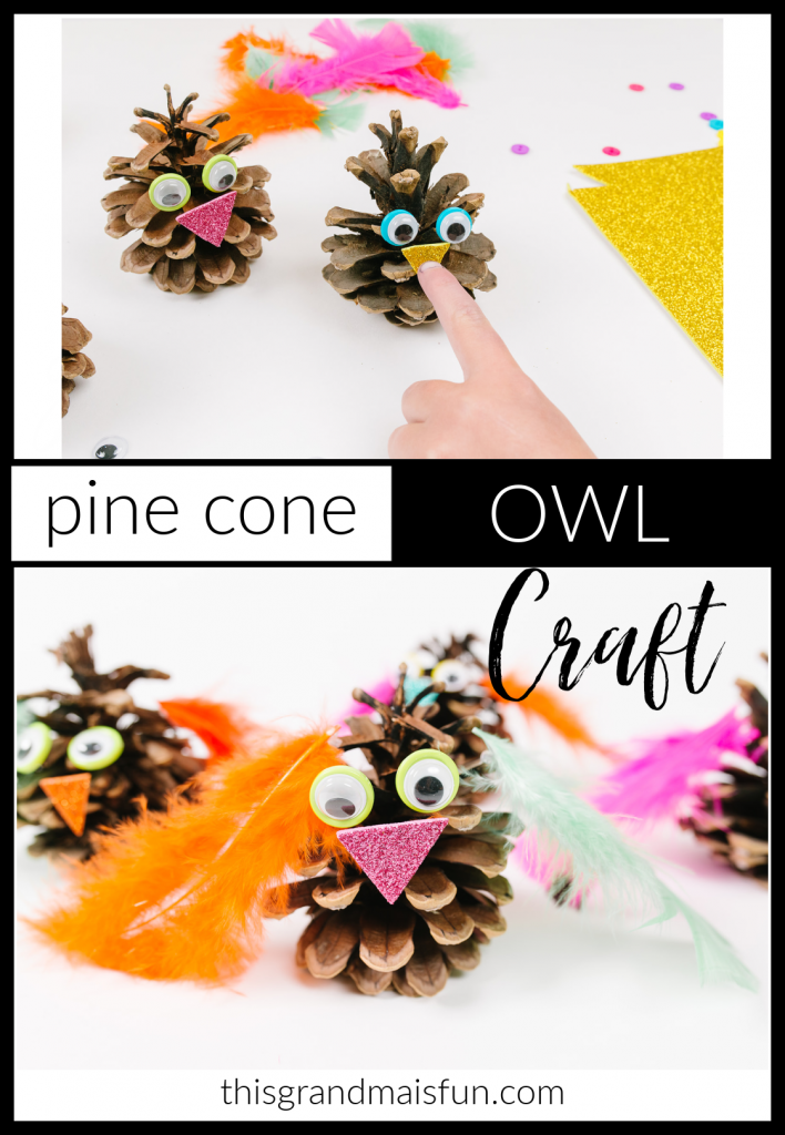 Keep kids busy while your Thanksgiving dinner cooks with this Pine Cone Owl Craft. Great as a toddler activity too!
