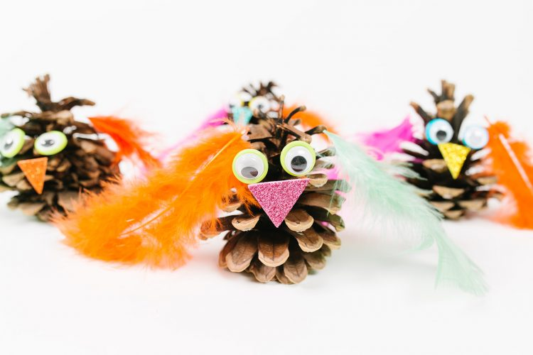 Pine Cone Owl Craft