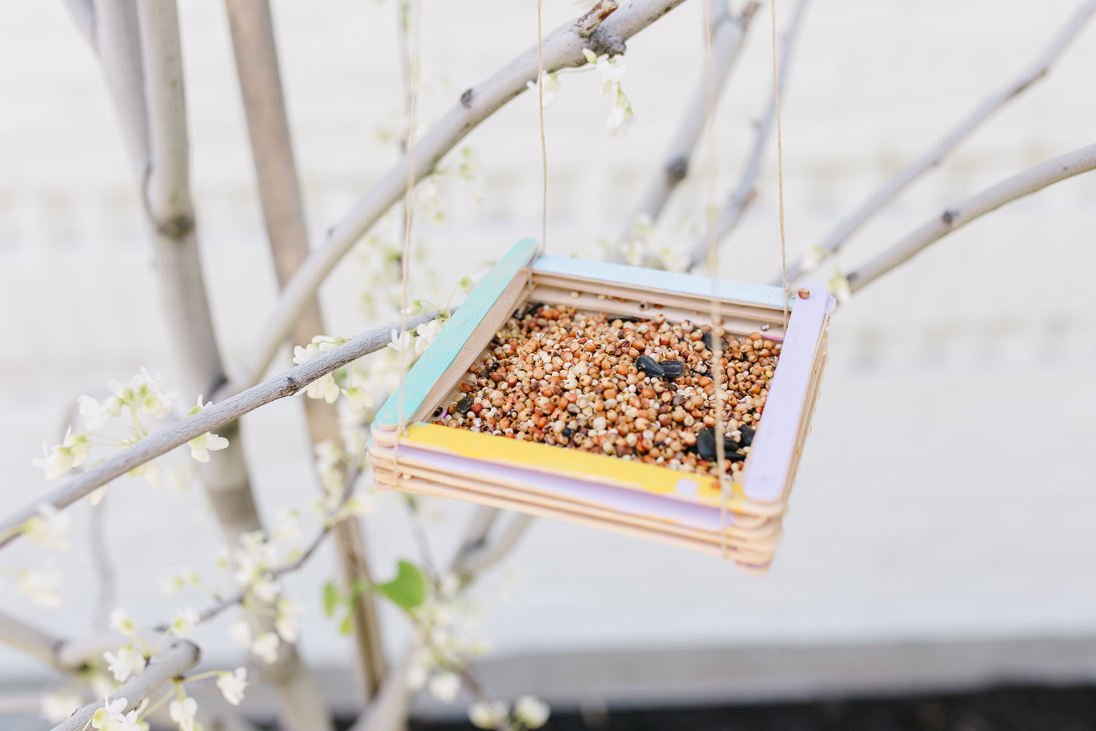 January is the perfect time to make our Easy Bird Feeder Craft. Birds have the hardest time finding something to eat in February. It's true! So make yours today!