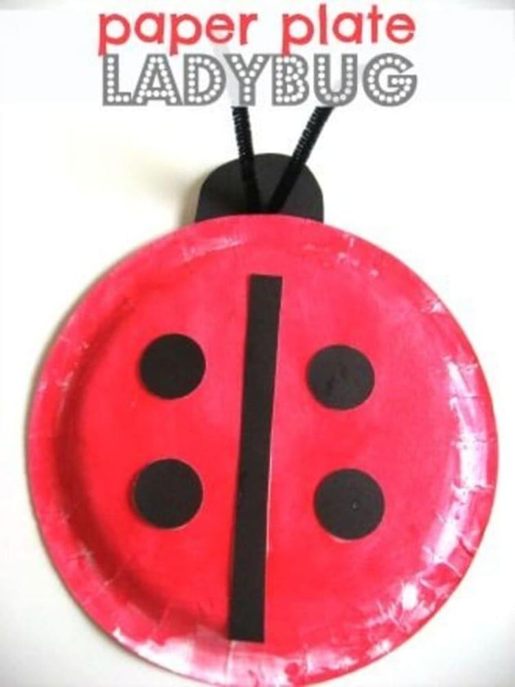 paper plate craft ladybug on white background