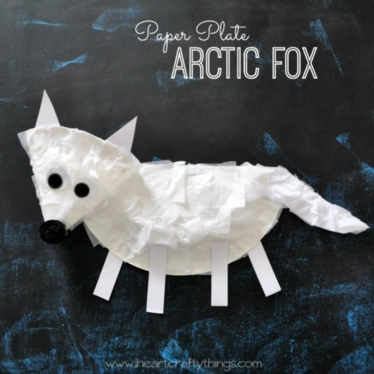 paper plate craft white arctic fox on a black surface