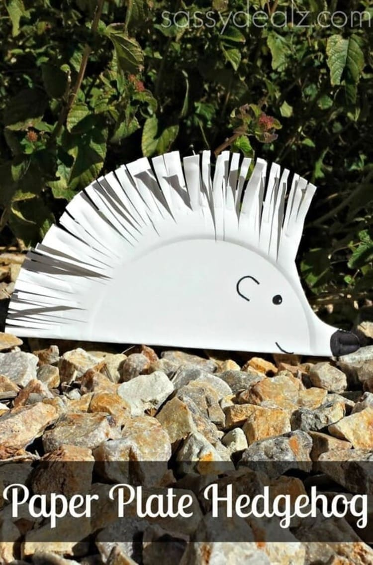 paper plate craft white hedgehog smiling and cure on rocks in the nature
